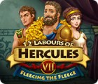 Игра 12 Labours of Hercules VII: Fleecing the Fleece