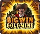 Игра Big Win Goldmine