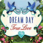Игра Dream Day True Love