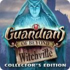 Игра Guardians of Beyond: Witchville Collector's Edition