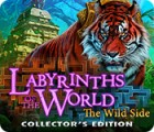 Игра Labyrinths of the World: The Wild Side Collector's Edition