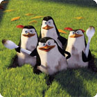 Игра The Penguins of Madagascar: Pollution Solution