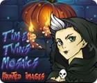 Игра Time Twins Mosaics Haunted Images